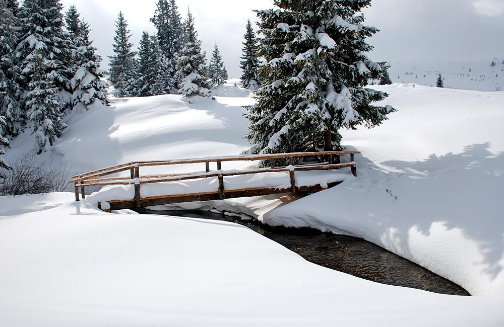 snowshoeing tours in vitosha mountains, bulgaria