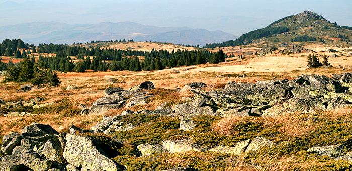 vitosha mountains and cherni vrah hiking day tour from sofia