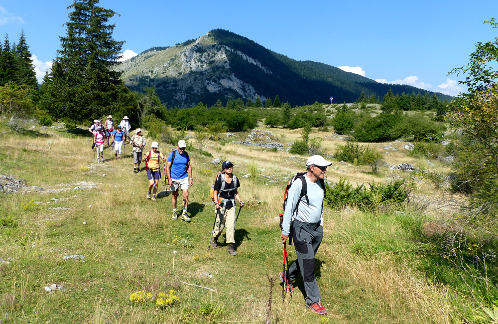 hiking tours in the rhodope mountains, bulgaria