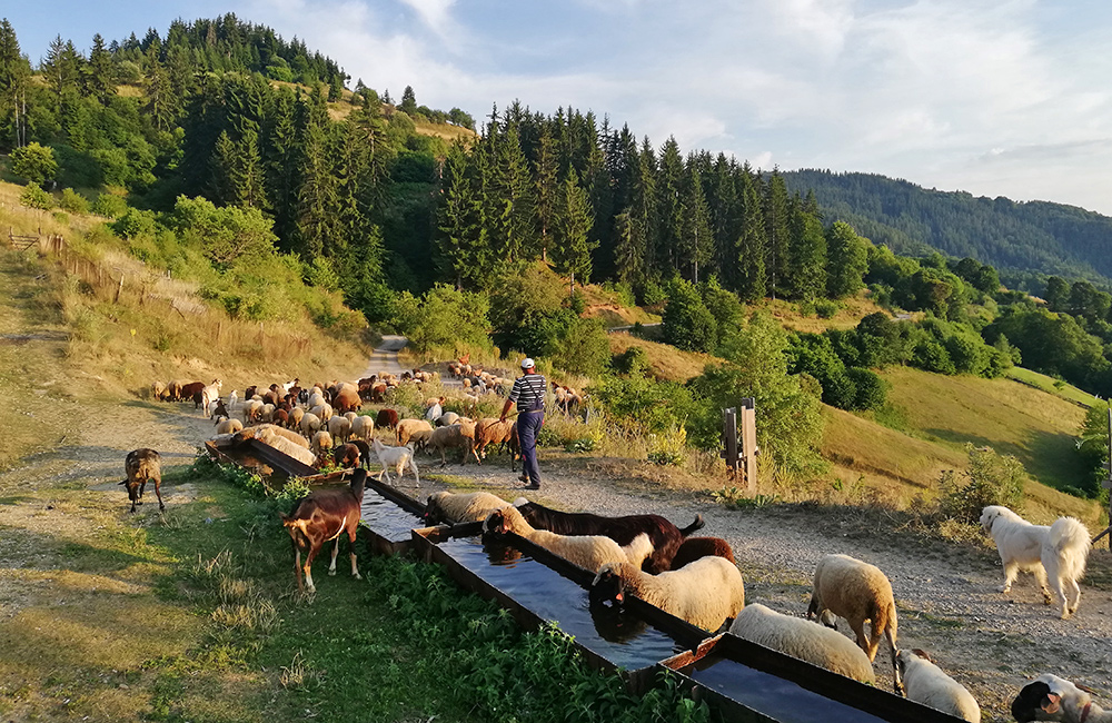 hiking tour in the rhodopes