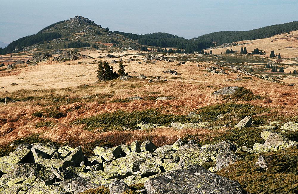 vitosha-mountains-walking-and-hiking-tours